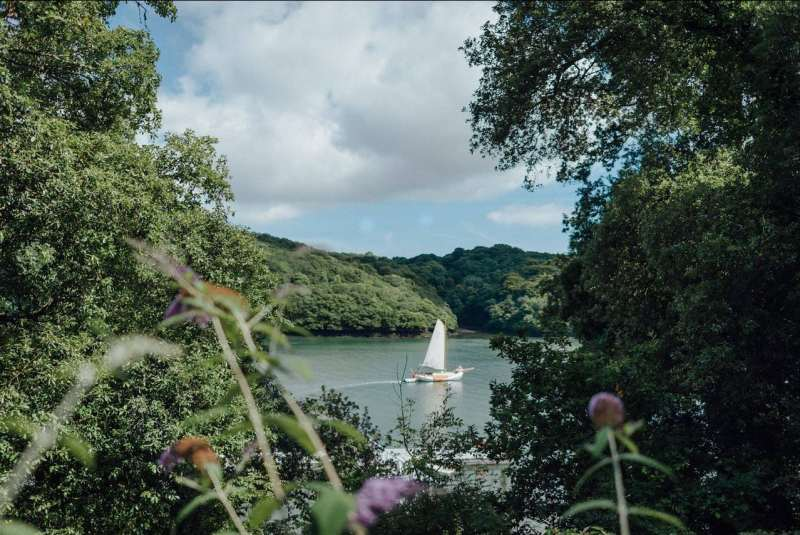 Sailing barge Drifter sailing past Trelissick